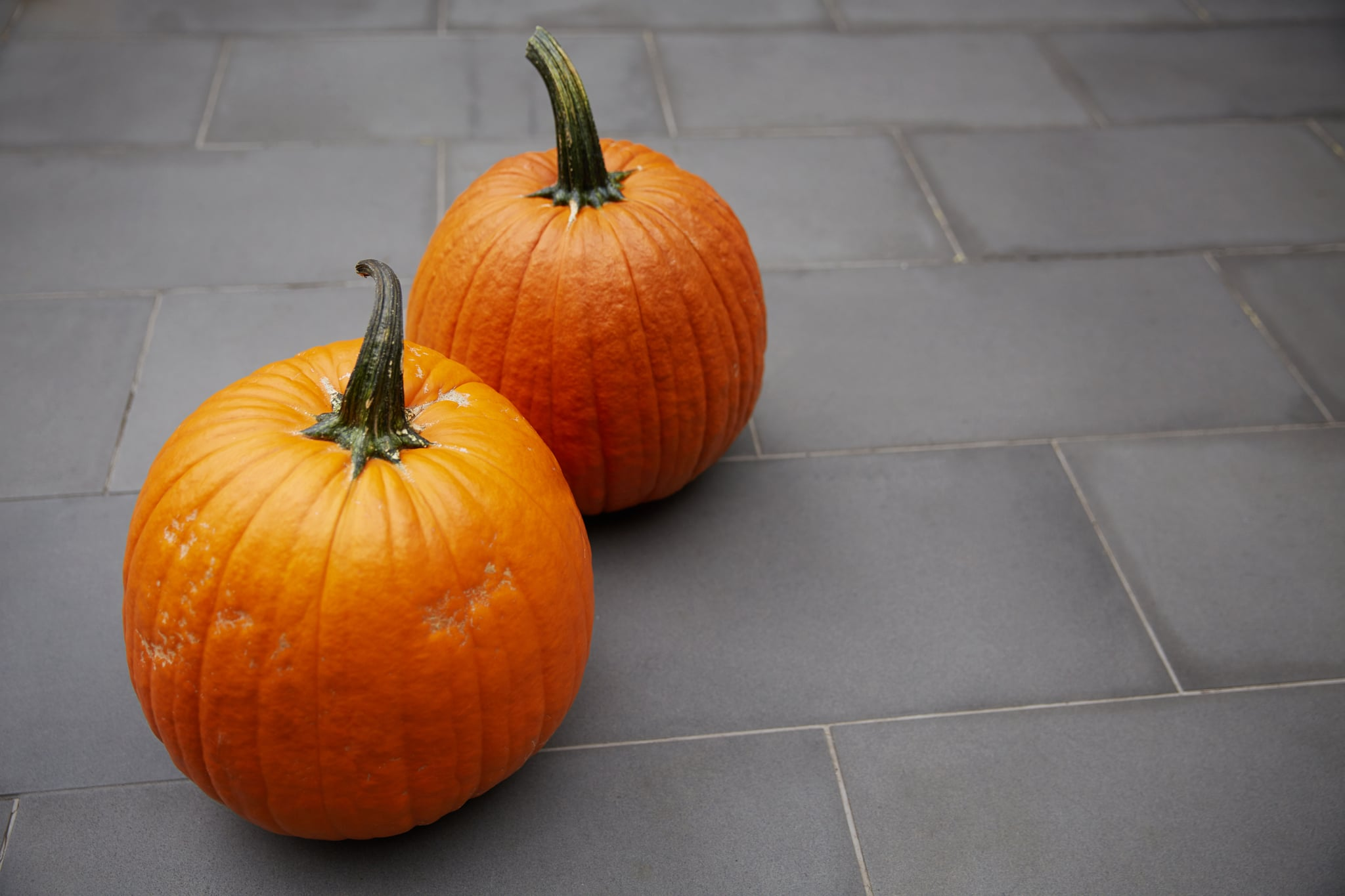 How Long Do Pumpkins Last Popsugar Home