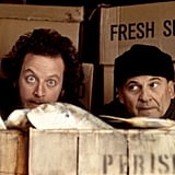 Marv and Harry, Home Alone