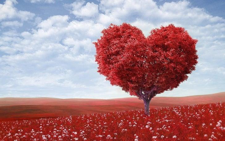 Cute Valentine S Day Desktop Backgrounds Popsugar Tech