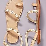 Mystique Shell-Embellished Sandals