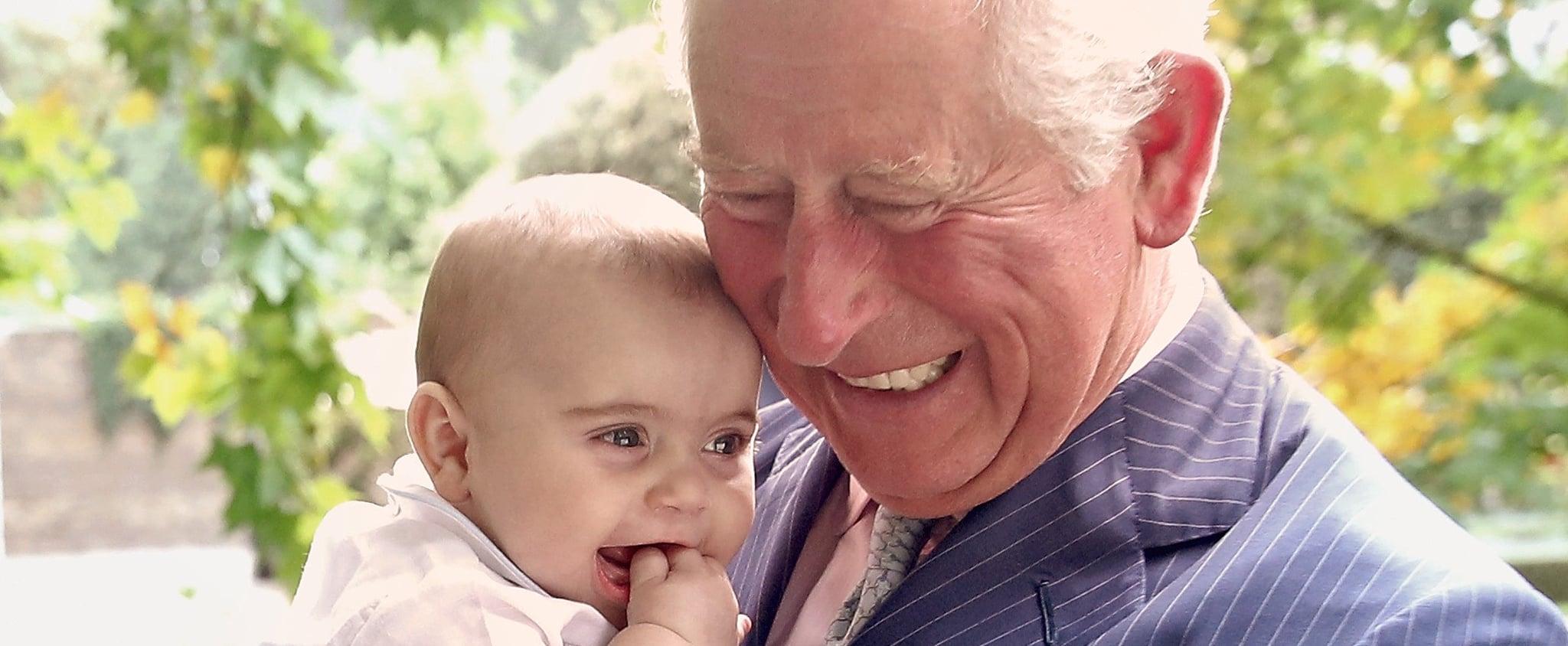 Prince Charles 70th Birthday Royal Portraits