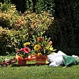Flowers were placed on the lawn at the South African High Commission in Australia.