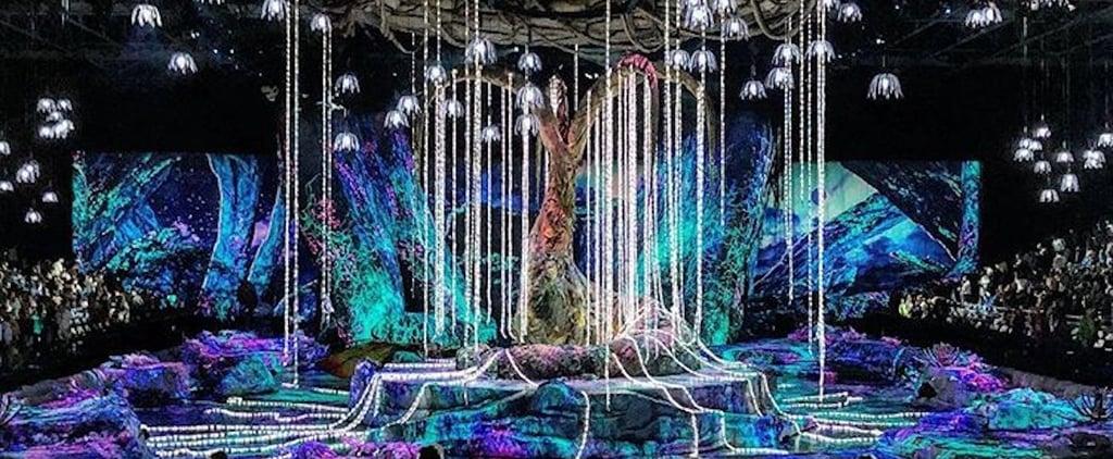 Toruk Cirque du Soleil Dubai 2018
