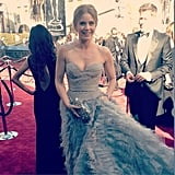 Amy Adams wore a fairy-tale-worthy Oscar de la Renta dress. Source: Instagram user theacademy