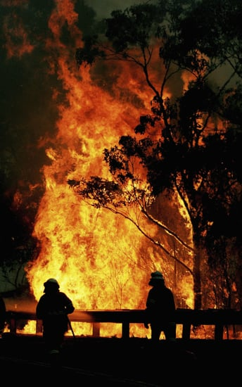 Islamic Group Threatens Forest Fire Jihad in Australia