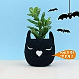 Black Cat Wool Planter