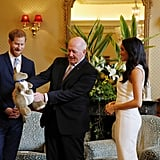 Meghan Markle and Prince Harry Receiving Baby Gift Video