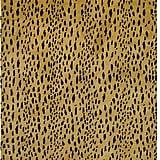 Leopard Skin Rug ($800)