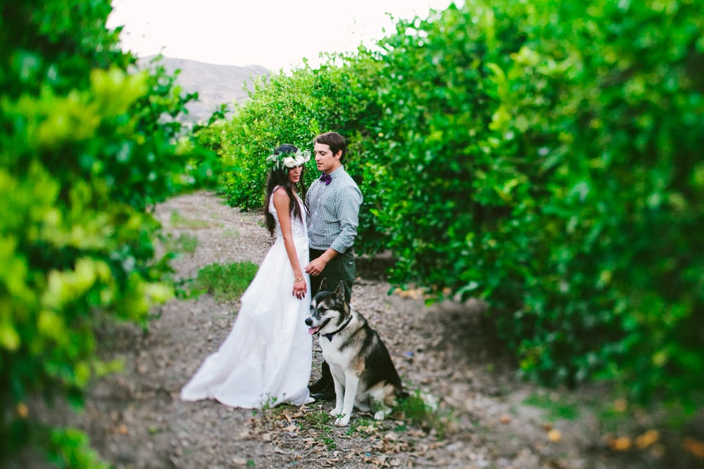 This Couple's Dog Was With Them Throughout Their Entire Wedding Day — Even at the Altar!