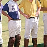 Harry chatted with Charles during a polo match in Gloucestershire, England, in 2001.