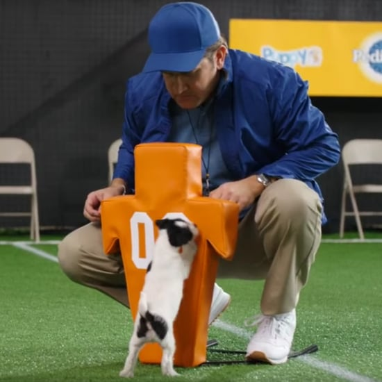 Puppy Bowl Tryout Video