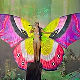 Butterfly Babe