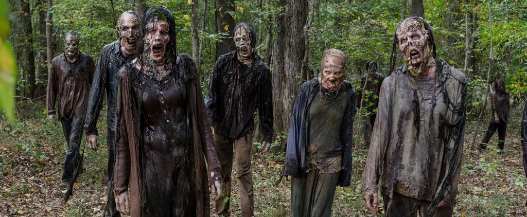 The Walking Dead 101: How Do You Kill a Walker?