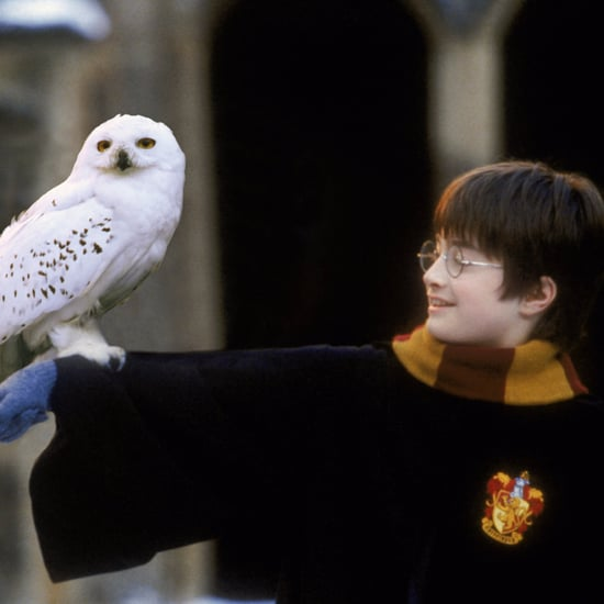 Harry Potter and the Philosopher's Stone Symphony Orchestra