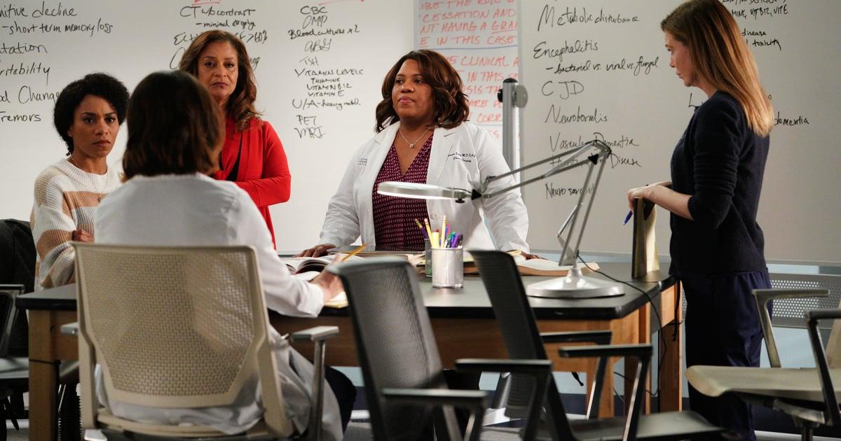 Grey's Anatomy Just Added 2 Series Regulars — Here's the Full Season 17 Cast