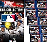 Baseball Sticker Book