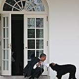صور بو وصني أوباما