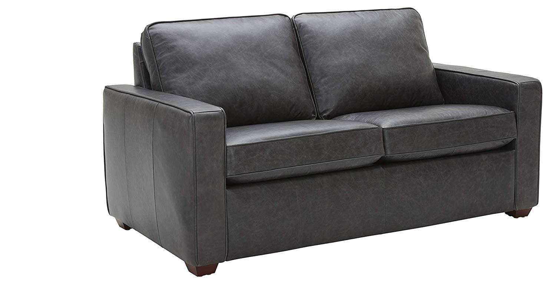 Rivet Andrews Contemporary Top-Grain Leather Loveseat Sofa ...