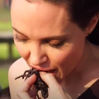 Angelina Jolie Eating Spiders Video