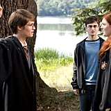 The Arrival of Lily and James Potter