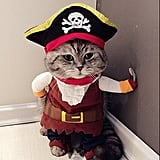 Pirate Costume​