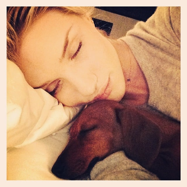 Rosie Huntington-Whiteley snuggled in bed with her dog. Source: Instagram user rosiehw
