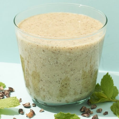 Healthy Dairy-Free Mint Chocolate Chip Smoothie