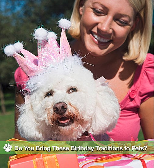 Do You Bring These Birthday Traditions to Pets?
