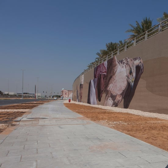 Abu Dhabi's Largest Mural Unveiled at Al Raha Beach