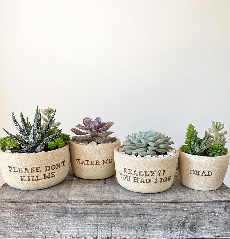 If Plants Could Talk Planter Set