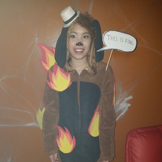 This Is Fine Dog Meme Costume