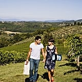 Travel to a Winery