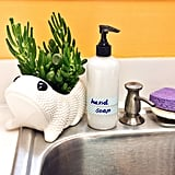 Coconut Oil Hand Soap
