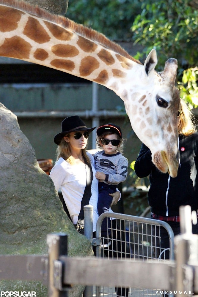Nicole Richie and Joel Madden Take Their Little Ones to the Sydney Zoo
