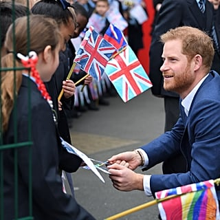Prince Harry Explaining Meghan Markle's Pregnancy to Kids