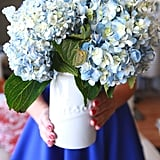 Hydrangeas Produce Flowers From Early Spring Through Fall