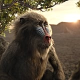 Rafiki From The Lion King