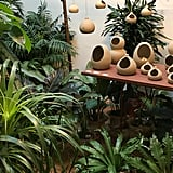 """As for how to get the look, Nancy advised, """"Get creative with planters by using both hanging and floor models or painting your pots in patterns that complement your interiors."""""""