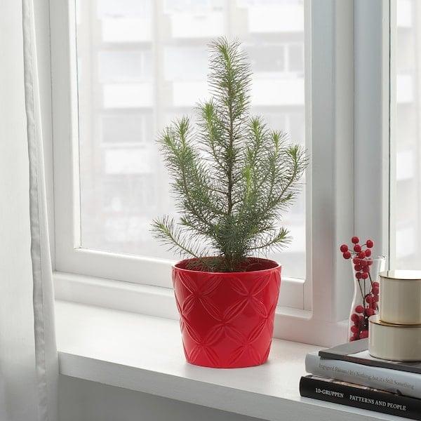 Vinterfest Patterned Red Plant Pot