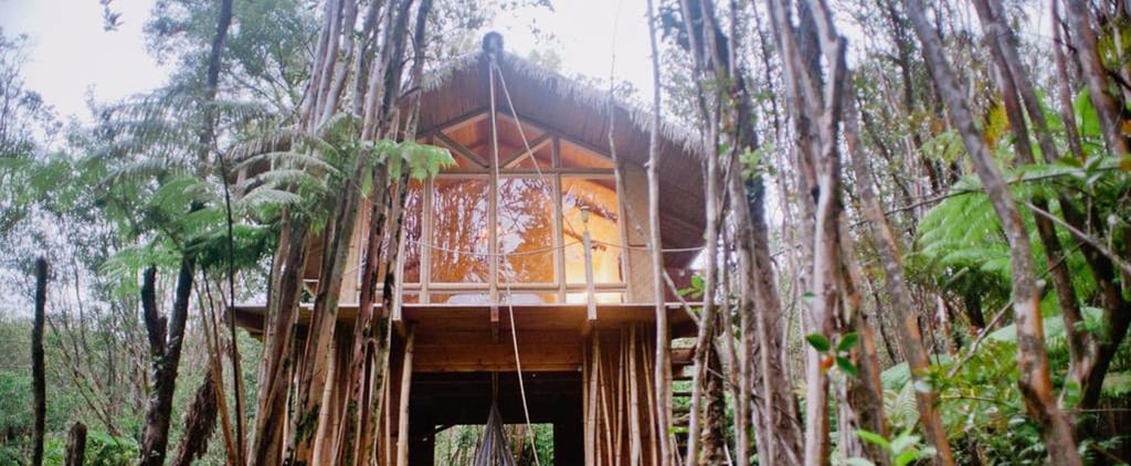 This Dreamy Tree House in Hawaii Has a Hanging Bed and a Real Trapdoor
