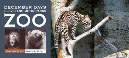 Out and About: Ohio's Cleveland Metroparks Zoo