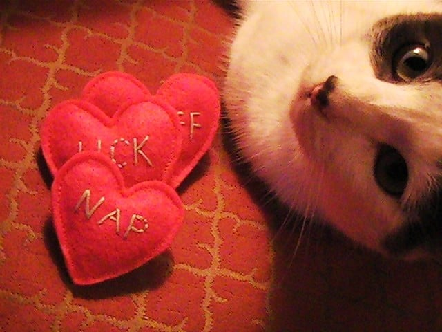 Conversation Hearts For Cats