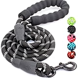 Baapet 5-Foot Strong Dog Leash With Comfortable Padded Handle