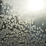 Ice crystals covered a window in Minneapolis, MN, during the polar vortex.