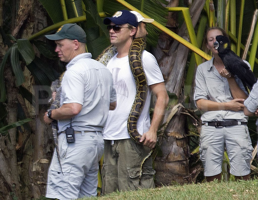 A newly single Leonardo DiCaprio looked relaxed even with an enormous snake dangled around his neck during a weekend trip to the Australia Zoo, which was founded by the late Steve Irwin. Leonardo had his mother along for the adventure Down Under as well as his good friend Tobey Maguire and his family. The whole crew boarded a private plane out of Sydney headed to the Sunshine Coast, where the zoo is located. Tobey's wife, Jennifer Meyer, stuck close to their two kids, Ruby and Otis, as they checked out the wildlife and the Crocodile Hunter's family, Terri and Bindi Irwin, gave the A-list crew a personalized tour of the zoo.  Leo has been in Australia shooting The Great Gatsby since August, and just yesterday he made headlines with the news of his recent breakup. Leonardo and Blake Lively's reps confirmed their split marking the end of their whirlwind five-month long courtship, which brought them from Italy to NYC and even Sydney, where she visited him on set. Luckily Leo has his buddy Tobey with him in Australia to help get over the breakup, and soon he'll have the promotional duties for J Edgar to also keep him distracted. Leonardo is never solo for long, and apparently Blake might be moving on already as well. She was spotted out with her Green Lantern costar Ryan Reynolds in Boston.