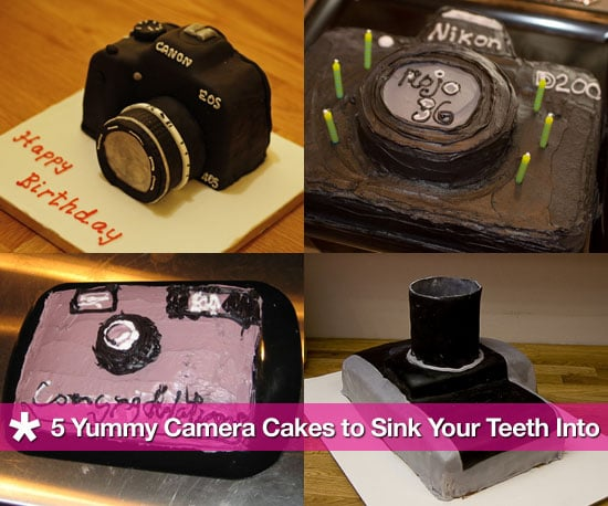 Camera Cakes for National Photography Month