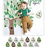"Lulujo Baby's First Year ""Here I Grow Again"" Muslin Blanket & Milestone Card Set"