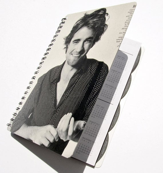 2013 Daily Planner ($15)