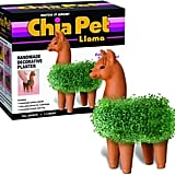 Chia Pet Llama Decorative Pottery Planter