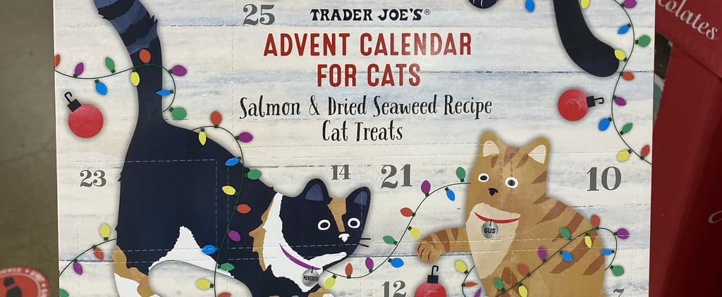 Trader Joe's Advent Calendars For Cats 2020